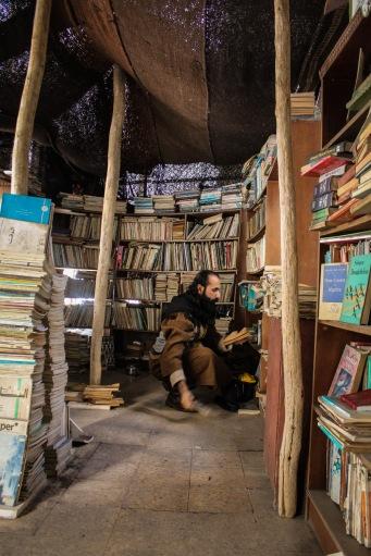 Hamzeh organizing books